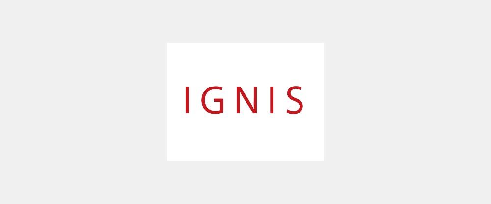 株式会社イグニス/テクニカルアーティスト(Mel、Python)/社内ツールの開発に携わります!